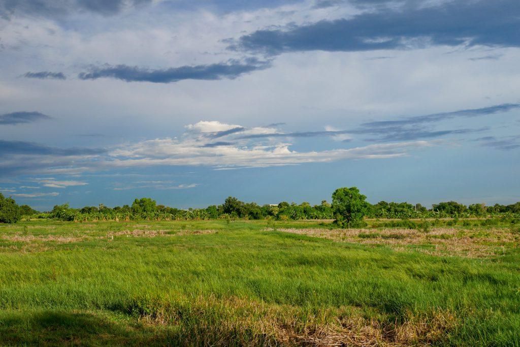 Mazury wiosną - piękna łąka i błękitne niebo