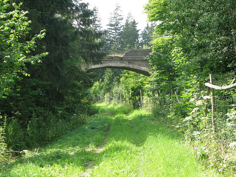 Puszcza Romincka - wiadukt